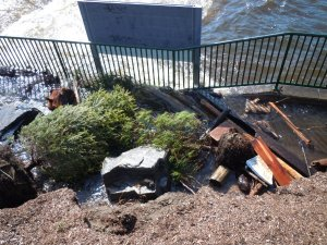 Trees uprooted at the base of the falls lie amongst other debris brought down the river.