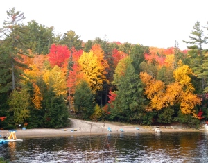 Autumn at High Falls, Bracebridge