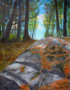 2013-28  Muskoka Rocks & Pine Needles #1, Acrylic on Canvas, 14 x 11, copyright Wendie Donabie 2013