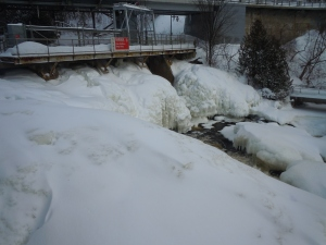 Upper Bracebridge Falls