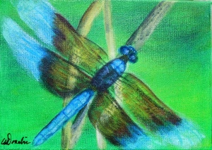 2014-21 Dragonfly #4, Acrylic on Canvas, 5 x 7 inches Copyright Wendie Donabie 2014