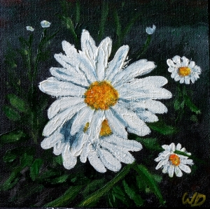 Daisy #1, Acrylic on Canvas, 6 x 6 inches, Copyright Wendie Donabie
