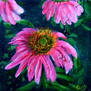 3686 - Echinacea #1 (Coneflower), Acrylic on Canvas, 6 x 6 inches, Copyright Wendie Donabie
