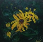 Black-Eyed Susan #1, Acrylic on Canvas, 6 x 6 inches, Copyright Wendie Donabie