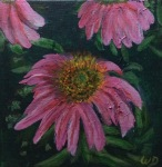 Echinacea (Coneflower)#1, Acrylic on Canvas, 6 x 6 inches, Copyright Wendie Donabie