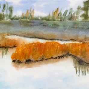 Autumn Reflection #1, Watercolour, 5 x 11 inches, Framed, Copyright Wendie Donabie