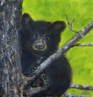 Up a Tree, Acrylic on Canvas, 6 x 6 inches, Copyright Wendie Donabie SOLD