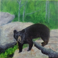 3723 - Bear Rocks, Acrylic on Canvas, 6 x 6 inches, Copyright Wendie Donabie